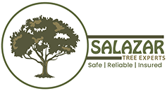 Salazar Tree Experts